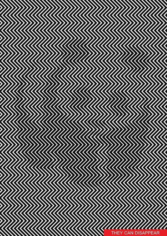 hidden panda_0