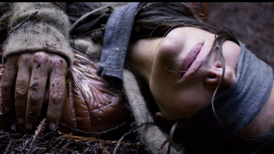 "Am văzut ""Bird Box"", filmul horror de pe Netflix care face victime"