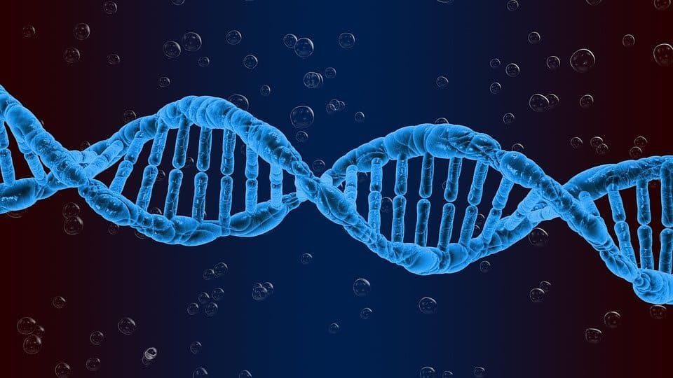 NVIDIA revoluționează analiza genomului