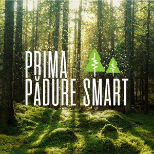 Vodafone anunță un proiect de pădure inteligentă